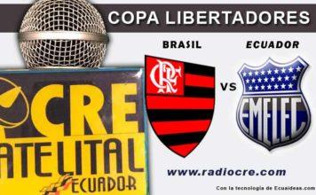 Emelec, Fútbol, Copa Libertadores,